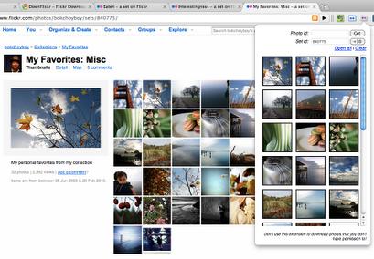 Descargar fotos de Flickr fácil
