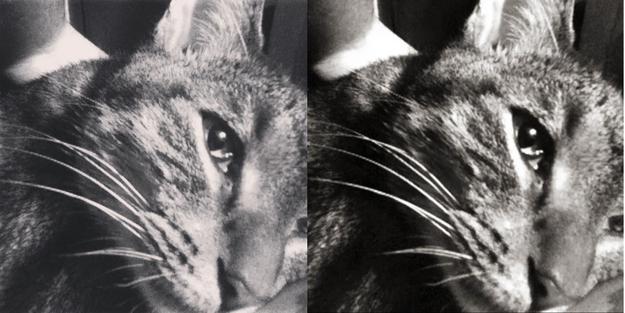 comparación de los filtros de Instagram y los filtros de Twitter