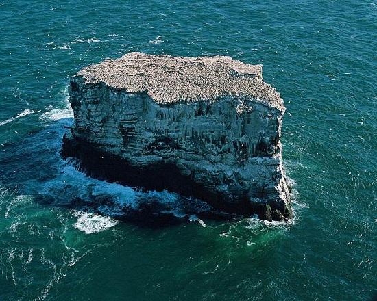 isla eldey