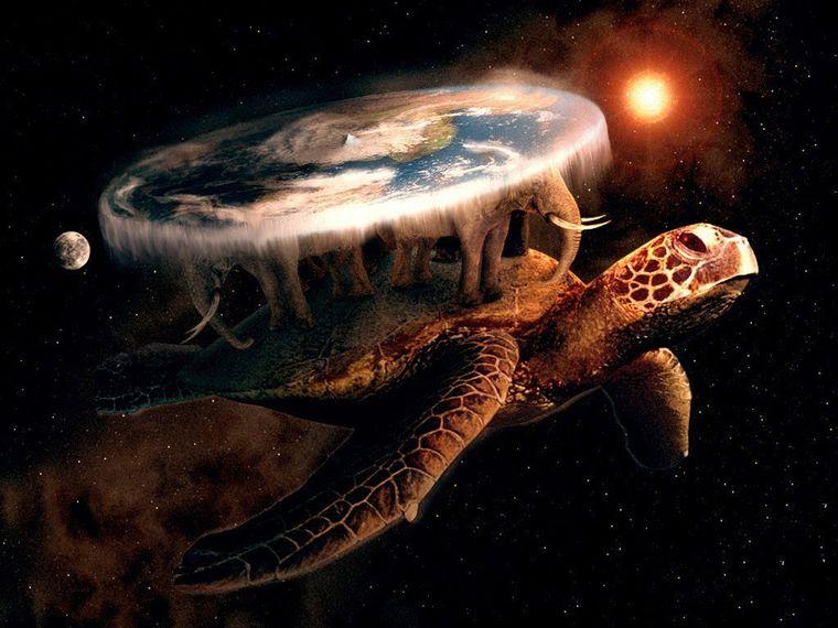 tortuga tierra plana